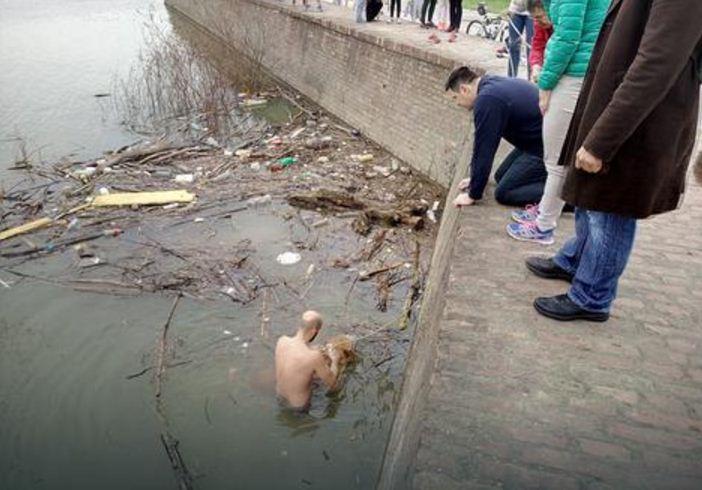 београђанин спасао пса