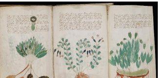 војничев рукопис
