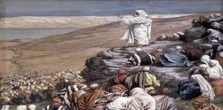 вера геровац