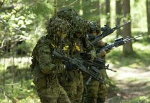 претња из естоније