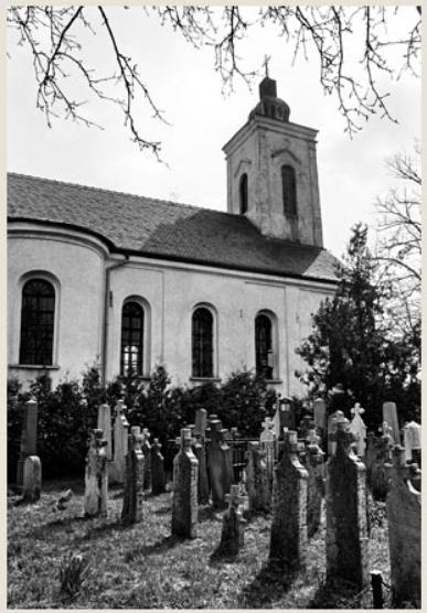 борачко гробље