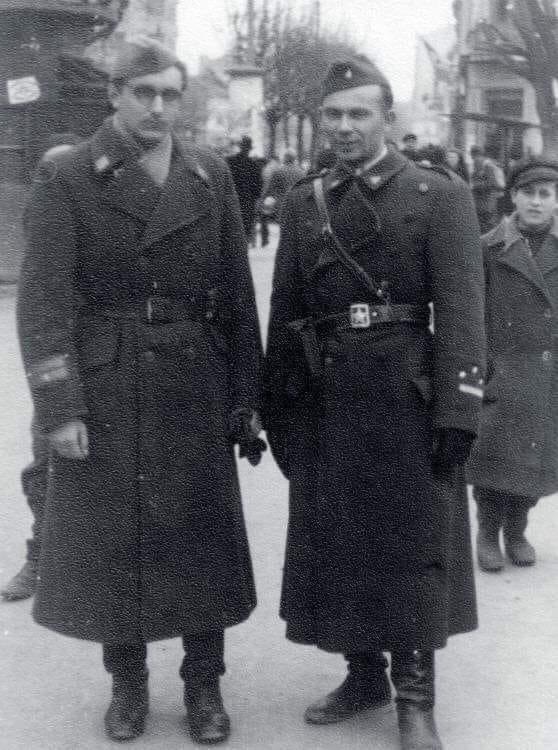 брозови партизани