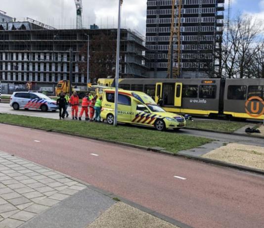 драма у холандији