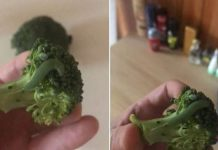 броколи